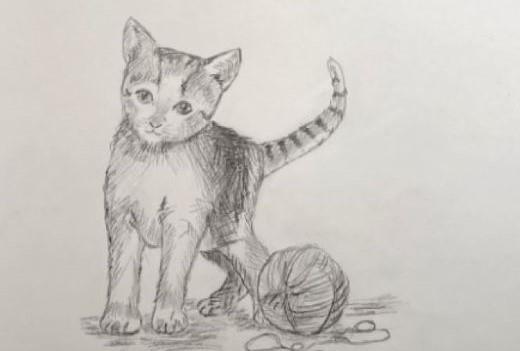 Klasse 6: Hell-Dunkel-Zeichnen